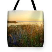 Pretty Evening At The Lake Tote Bag by Susanne Van Hulst