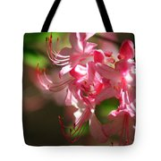Pretty Pink Tote Bag by Marty Koch