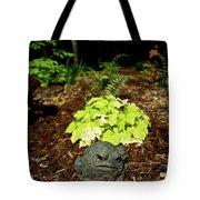 Private Garden Go Away Tote Bag by Douglas Barnett