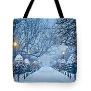 Public Garden Walk Tote Bag by Susan Cole Kelly