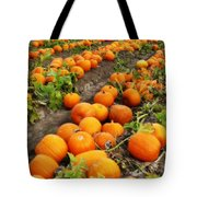 Pumpkin Patch Tote Bag by Carol Groenen