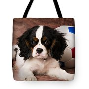 Puppy with ball Tote Bag by Garry Gay