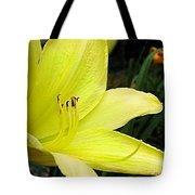 Pure Sunshine Tote Bag by Patricia Griffin Brett