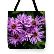 Purple Aster Blooms Tote Bag by John Haldane