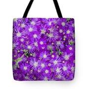 Purple Flowers Tote Bag by Frank Tschakert