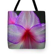 Purple Haze Tote Bag by Donna Shahan