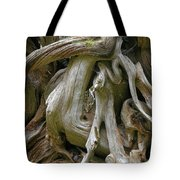 Quinault Valley Olympic Peninsula Wa - Exposed Root Structure Of A Giant Tree Tote Bag by Christine Till