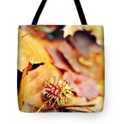 Rainbow In A Sigh Tote Bag by Rebecca Sherman