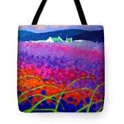 Rainbow Meadow Tote Bag by John  Nolan