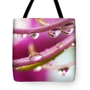 Raindrops Tote Bag by Marilyn Hunt