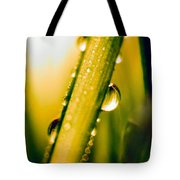 Raindrops On A Blade Of Grass Tote Bag by Mariola Bitner