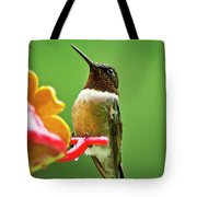 Rainy Day Hummingbird Tote Bag by Christina Rollo