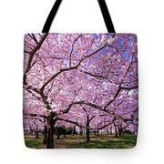 Rapt Away Tote Bag by Mitch Cat