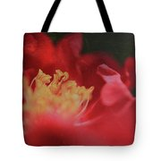 Reaching For Joy Tote Bag by Laurie Search