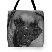 Really Comfy Tote Bag by DigiArt Diaries by Vicky B Fuller