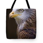 Red Kite Tote Bag by Angel  Tarantella