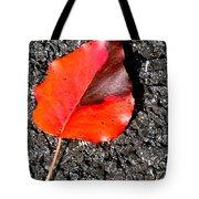 Red Leaf On Asphalt Tote Bag by Douglas Barnett