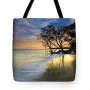 Reflections Of Paradise Tote Bag by Mike  Dawson