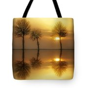 Remains Of The Day Tote Bag by Jacky Gerritsen
