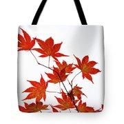 Remembering Yoshino Tote Bag by Sophie De Roumanie