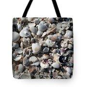 Remnants Tote Bag by Terri Winkler