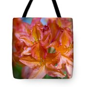 Rhododendron Flowers Tote Bag by Frank Tschakert
