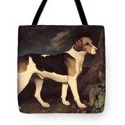 Ringwood Tote Bag by George Stubbs