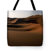 Ripples In The Sand Tote Bag by Ralph A  Ledergerber-Photography