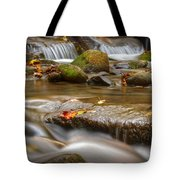 Roaring Fork Stream Great Smoky Mountains Tote Bag by Steve Gadomski