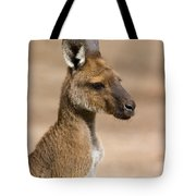 Roo Portrait Tote Bag by Mike  Dawson