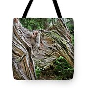 Roots - Welcome To Olympic National Park Wa Usa Tote Bag by Christine Till