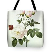 Rosa Bengale The Hymenes Tote Bag by Pierre Joseph Redoute