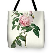 Rosa Chinensis And Rosa Gigantea Tote Bag by Joseph Pierre Redoute