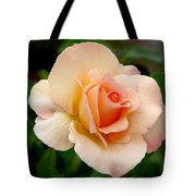 Rose Is A Rose Is A Rose Tote Bag by Christine Till