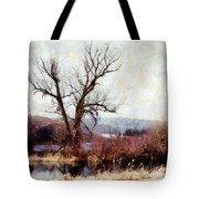 Rustic Reflections Tote Bag by Janine Riley
