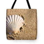 Sandy Shell Tote Bag by Jorgo Photography - Wall Art Gallery