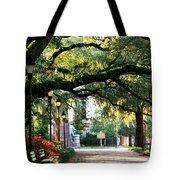 Savannah Park Sidewalk Tote Bag by Carol Groenen