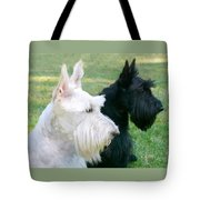 Scottish Terrier Dogs Tote Bag by Jennie Marie Schell
