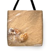 Seashell Turbulence Tote Bag by Kaye Menner