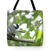 Second Glance Tote Bag by Angie Rea