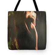 Secrets Tote Bag by Sergey Ignatenko