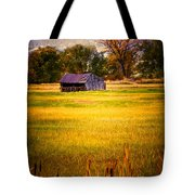 Shed In Sunlight Tote Bag by Marilyn Hunt