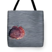 Shell Imprint Tote Bag by Linda Sannuti