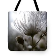 Shimmering Flower I Tote Bag by Ray Laskowitz - Printscapes