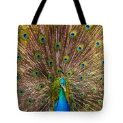 Showing Your Colors Tote Bag by Mike  Dawson
