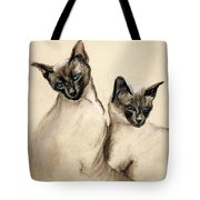 Sibling Love Tote Bag by Cori Solomon