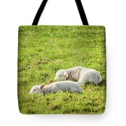 Silence Of The Lambs Tote Bag by Wim Lanclus