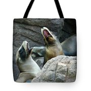 Singing Sea Lions Tote Bag by Anthony Jones