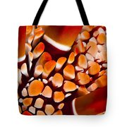 Slate Pencil Urchin Tote Bag by Dave Fleetham - Printscapes