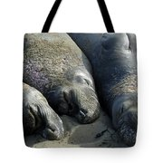 Slumber Party Tote Bag by Methune Hively